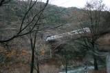 トロッコ列車車窓風景
