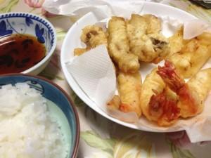 天ぷら-時事戯言!炎症性腸疾患(クローン病)