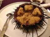 大連海鮮料理(うに)-時事戯言!炎症性腸疾患(クローン病)