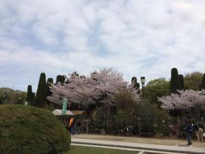大阪城公園-時事戯言!炎症性腸疾患(クローン病)