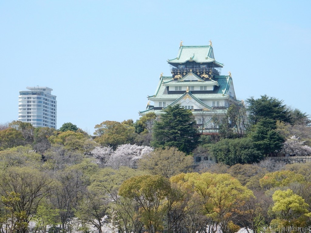 大阪城の春