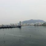 韓国出張中[ジャカルチ市場徘徊編]-クローン病 海外出張120227