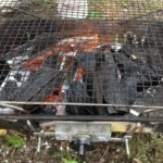 大泉緑地にバーベキューへ行ったけど見てるだけ-焼肉120504