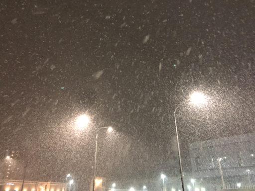 雪の富山市内