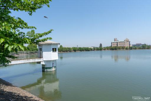 堺市中区深井水池町水賀池公園