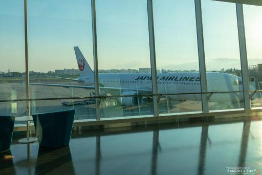 伊丹空港とJAL